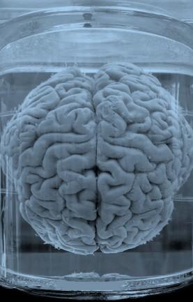 brain-in-jar2